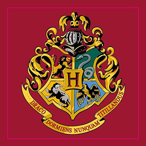 Harry Potter Hogwarts - Alfombra cuadrada dormitorio