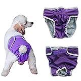 Bild: YiZYiF Hundeschutzhosen für Hunde Hündinnen Läufigkeit Unterhose Unterwäsche Hundehöschen XSXL Lila XL