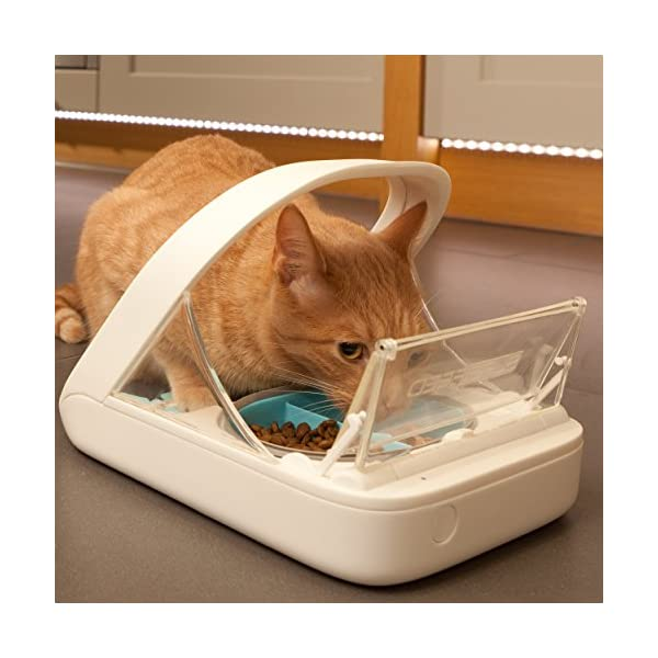 Surefeed Distributeur de Nourriture à Puce Électronique pour chat et Petit chien, Blanc