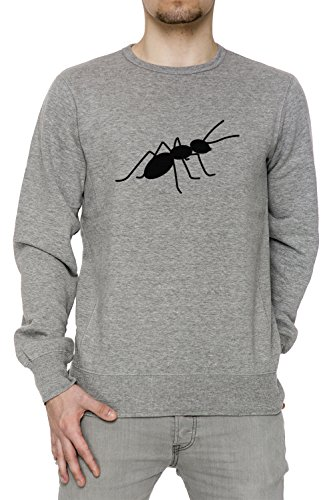Fourmi Gris Coton Homme Sweat-shirt Jersey Pull-over Grey Men's Sweatshirt Pullover Jumper
