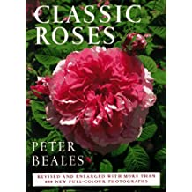 Classic Roses: An Illustrated Encyclopedia and Grower's Manual of Old Roses, Shrub Roses and Climbers