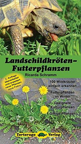 landschildkroten-futterpflanzen