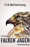 Image of Falken jagen