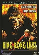 King Kong lebt hier kaufen
