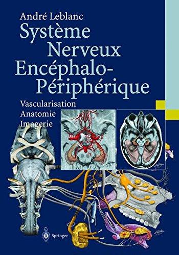 Système Nerveux Encephalo-Périphérique : Vascularisation - Anatomie - Imagerie