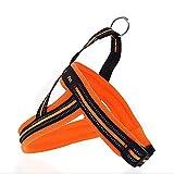 CERBERUS Front Range Hundegeschirr Anpassung Outdoor Adventure Pet Weste Mit Griff Easy Control,Orange,S