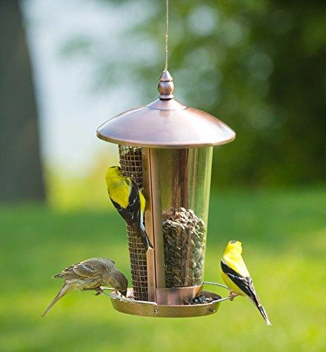 Die beste Vogelfutterstation, großartige Futterstationen für mittelgroße Vögel