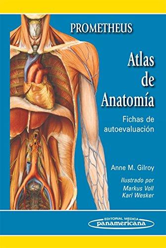 Atlas de Anatomía: Fichas de autoevaluación por Anne Gilroy Prometheus