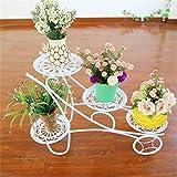 ChenDz Nordic minimalistische Moderne Wohnzimmer-Blumen-Gestell-Schmiedeeisen bodenständiger fleischiger Balkon-grüner Lutscher-Orchideen-Blumen (Color : White)