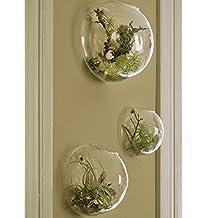 Set of 3 Wall Bubble Terrariums Indoor Plants Planters Vase Wall Mounted Mini Aquarium Wall Decor