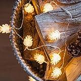 Glühbirnen Lichterkette,gaddrt Tannenzapfen Dekorative Lampe Wasserdichte LED-Lampe String Hof Balkonlampe (A)