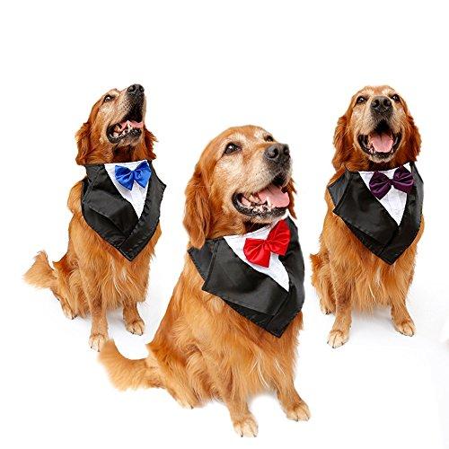 Tofern Hundehalsband Schleife Krawatte Hochzeit Kostüm Party Fliege, Rot (Tier Kostüm Für Große Hunde)