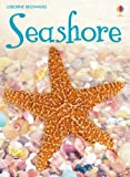 Seashore: For tablet devices (Usborne Beginners)
