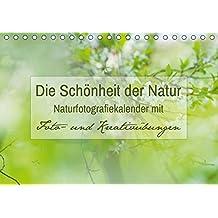 Die Schönheit der Natur -  Naturfotografie-Kalender mit Foto- und Kreativübungen (Tischkalender 2017 DIN A5 quer): Traumhafte Naturfotos mit Foto- und ... 14 Seiten ) (CALVENDO Hobbys)