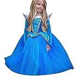 Vestito Abito per bambino ragazza bambina Principessa Natale Partito Compleanno bambini vestito carnevale bambina abiti Principessa Fantasia Vestite Halloween Costume (Blu, 110(3-4T))