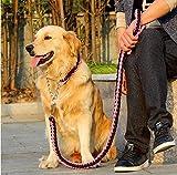 Manco Luella Strapazierfähiges Hundehalsband, verstellbar, Martingal, geflochtenes Halsband, Schlaufe, Robuster Metall-Clip, Anti-Verdrehen, für mittelgroße und große Rassen