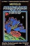 Meerwasser Atlas, Kt, Bd.3, Wirbellose Tiere