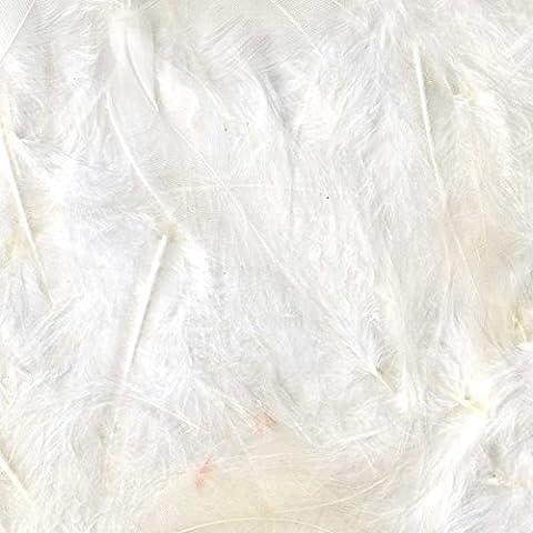 Plume Blanche - Plumes - Blanc - Sachet De 3G