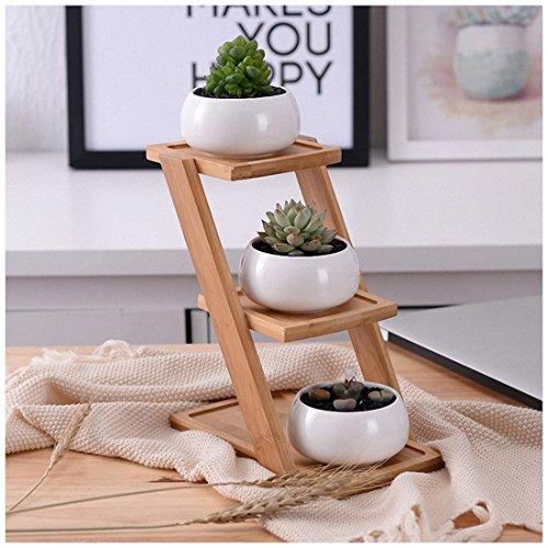 TOOGOO Dekorative kleine Runde Sukkulenten Topf 3 Tier Bambus Stand-Fenster Display-Home Dekoration (weiss)