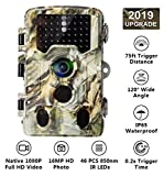 AlfaView [2019 Upgraded] 16MP 1080P HD Game Hunting Trail Camera with 120°Wide Angle
