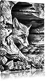 Monocrome, Fuchs im Baumstamm , Format: 60x40 auf Leinwand, XXL riesige Bilder fertig gerahmt mit Keilrahmen, Kunstdruck auf Wandbild mit Rahmen, günstiger als Gemälde oder Ölbild, kein Poster oder Plakat