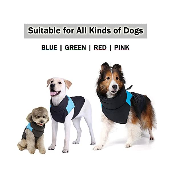 TFENG Waterproof Dog Coats Padded Puffer Jackets with D-Rings for Leash 4 Colors XS-5XL 5