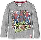 Marvel Amazing Spiderman, Camiseta para Niños, Gris (D Grey Medium), 3 Años