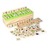 Zerodis Learning Toys Classificazione delle conoscenze Blocchi di scatole di Legno per i Bambini in età prescolare Formazione Iniziale Matematica