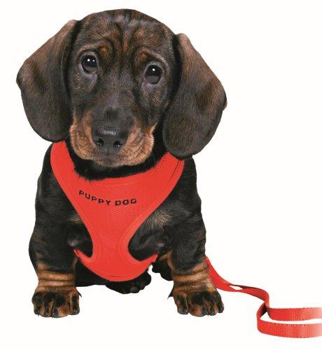 Trixie Pettorina morbida con guinzaglio per cuccioli, rosso - 15563