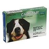 Elanco Deutschland GmbH Capstar 57 mg Tabletten für Grosse Hunde 6 STK