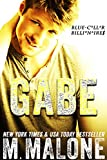 Gabe (Blue-Collar Billionaires #3)