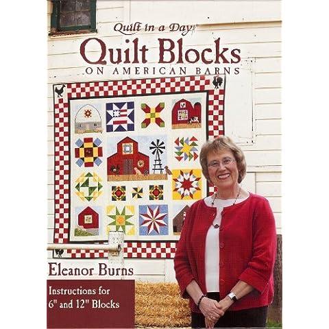 Quilt Blocks on American Barns by Eleanor Burns (2010-04-14)