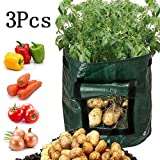 Beisoug 3PCS DIY Potato Grow Planter PE Cloth 3Pcs Piantare Sacchetto contenitore Addensare Garden Pot