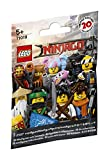 LEGO Minifigures 71019 - The Ninjago Movie