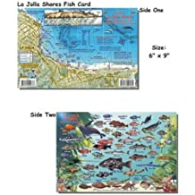 La Jolla Shores Fish ID for Scuba Divers and Snorkelers
