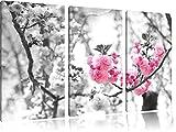 sehr schöne Kirschblüten schwarz/weiß auf 3-Teiler Leinwandbild 120x80 Bild auf Leinwand, XXL riesige Bilder fertig gerahmt mit Keilrahmen, Kunstdruck auf Wandbild mit Rahmen, gänstiger als Gemälde oder Ölbild, kein Poster oder Plakat