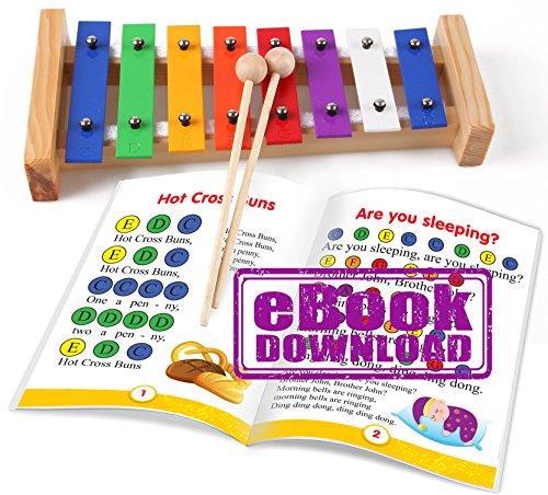 8 Töne Regenbogenfarbig Xylophon für Kinder mit Holzständer und Holzhämmer