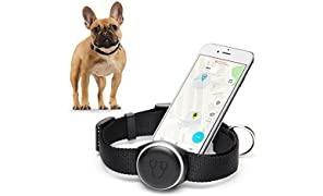Mishiko - GPS Tracker Halsband für Hunde I Aktivitäts Tracker I Universal