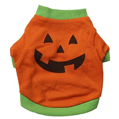 Halloween Haustierkleidung, Hmeng Puppy haustier Pullover Pullover KleidungShirt Tops Kürbis Haustier Kostüme (S, Orange)