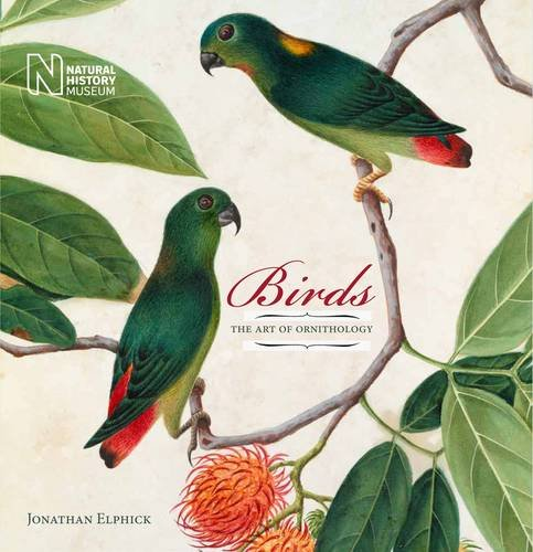 birds-the-art-of-ornithology