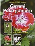Gerani Pelargonium