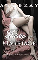 Felicity in Marriage (An Erotic Pride and Prejudice Continuation Book 1)