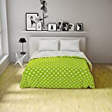 Spaces Essentials Cotton Double Dohar - Green