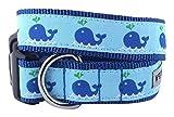 The Worthy Dog Squirt Halsband, blau, XL