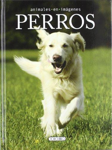 Perros (Animales en imágenes)