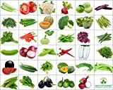 #1: Only For Organic 35 Varieties Of Seeds With Instruction Manual - 1600+ Seeds