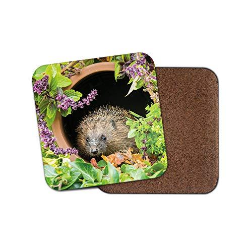 Bonito posavasos de erizo, diseño de flores, para jardín, fauna, naturaleza, animal, regalo genial #14340