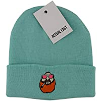 2fb7aa19920 Actual Fact Action Bronson Smoking Weed Embroidered Winter Hip Hop Roll Up  Mint Wooly Beanie Hat