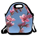 VTXWL Pink Plum Blossom Graphic Lunch Tote Lunch Bag Outdoor Picnic Reusable