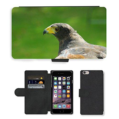 Just Mobile pour Hot Style Téléphone portable étui portefeuille en cuir PU avec fente pour carte//m00139000Hawk Harris d'Oiseaux proie Tête Bec//Apple iPhone 6Plus 14cm